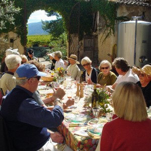 Wine harvest lunch